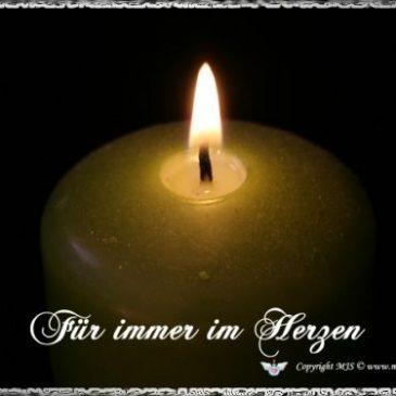 Wir trauern um Georg Geng